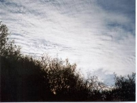 Cirrostratus Clouds